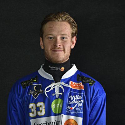 33 William Arvidsson