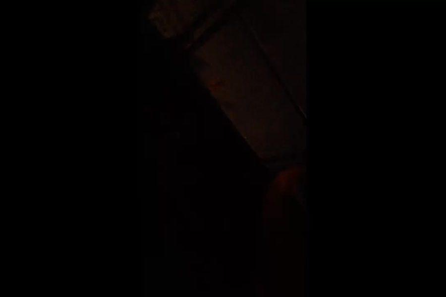 video 2859